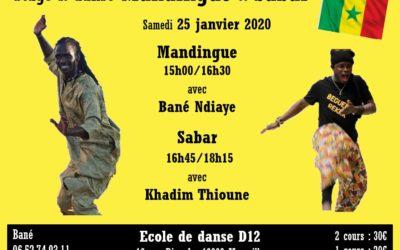 Samedi 25 janvier 2020 – Stage de danse Mandingue & Sabar