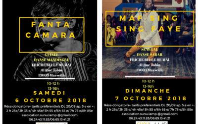 6 et 7 octobre 2018 – Stages de danses africaines